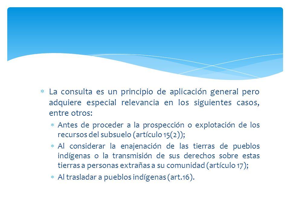 La consulta es un principio de aplicación general pero adquiere especial relevancia en los siguientes casos, entre otros: Antes de proceder a la prosp