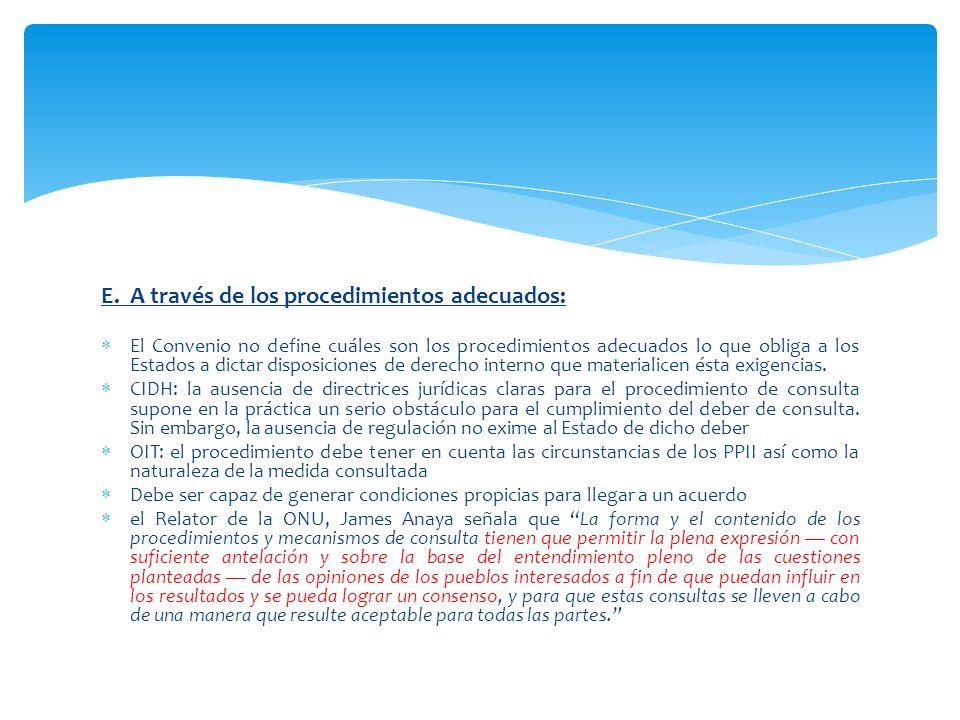 E. A través de los procedimientos adecuados: El Convenio no define cuáles son los procedimientos adecuados lo que obliga a los Estados a dictar dispos