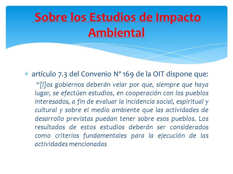 artículo 7.3 del Convenio Nº 169 de la OIT dispone que: [l]os gobiernos deberán velar por que, siempre que haya lugar, se efectúen estudios, en cooper