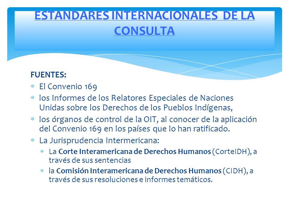 FUENTES: El Convenio 169 los Informes de los Relatores Especiales de Naciones Unidas sobre los Derechos de los Pueblos Indígenas, los órganos de contr