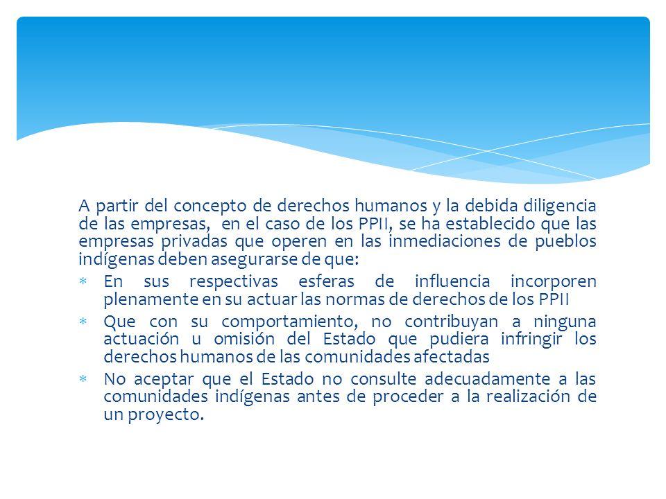 A partir del concepto de derechos humanos y la debida diligencia de las empresas, en el caso de los PPII, se ha establecido que las empresas privadas