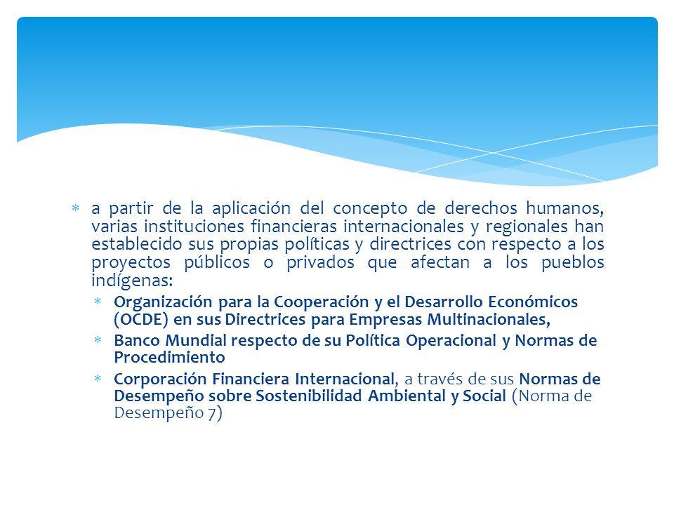 a partir de la aplicación del concepto de derechos humanos, varias instituciones financieras internacionales y regionales han establecido sus propias