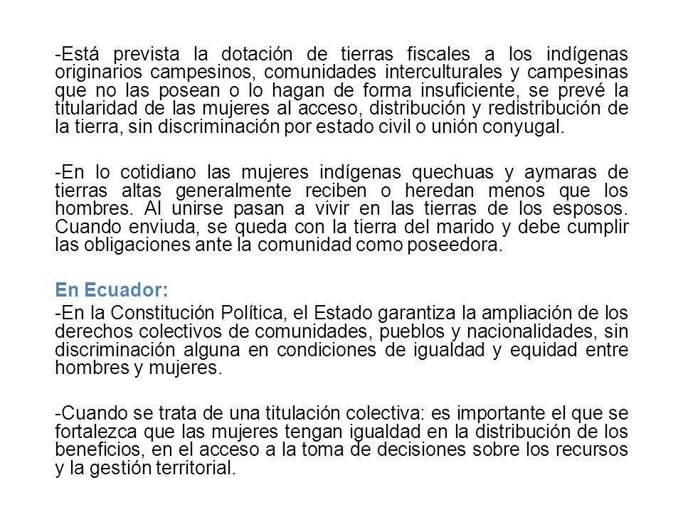 -Está prevista la dotación de tierras fiscales a los indígenas originarios campesinos, comunidades interculturales y campesinas que no las posean o lo