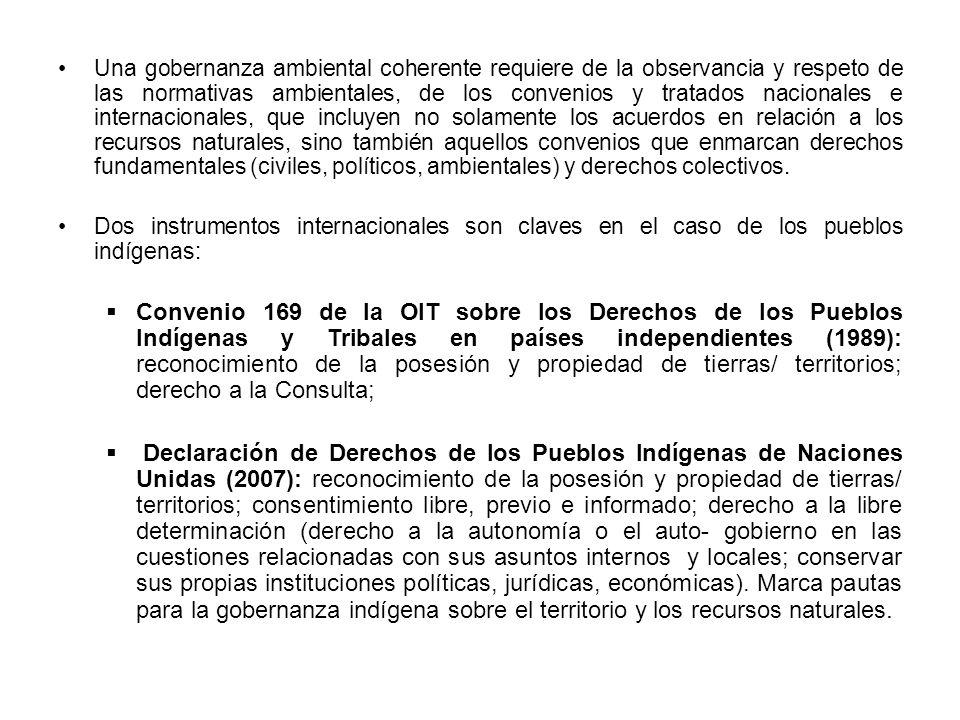 4.- ¿Qué es la Gobernanza indígena.
