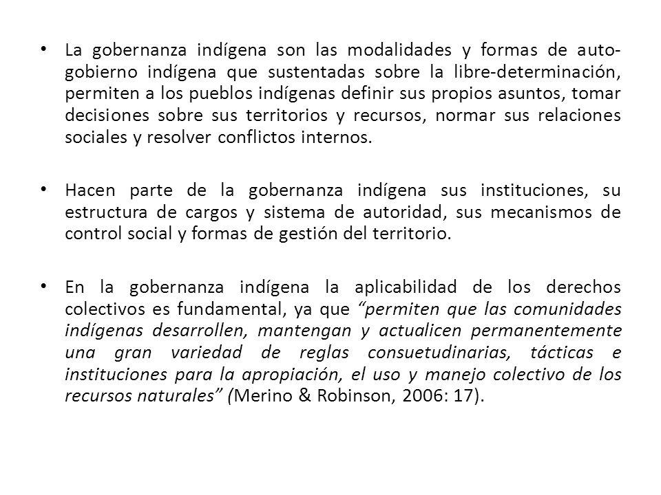 La gobernanza indígena son las modalidades y formas de auto- gobierno indígena que sustentadas sobre la libre-determinación, permiten a los pueblos in