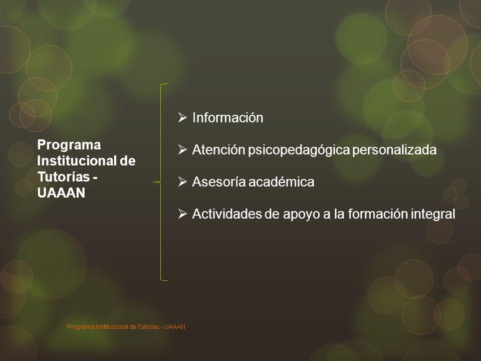 Programa Institucional de Tutorías - UAAAN Información Atención psicopedagógica personalizada Asesoría académica Actividades de apoyo a la formación i
