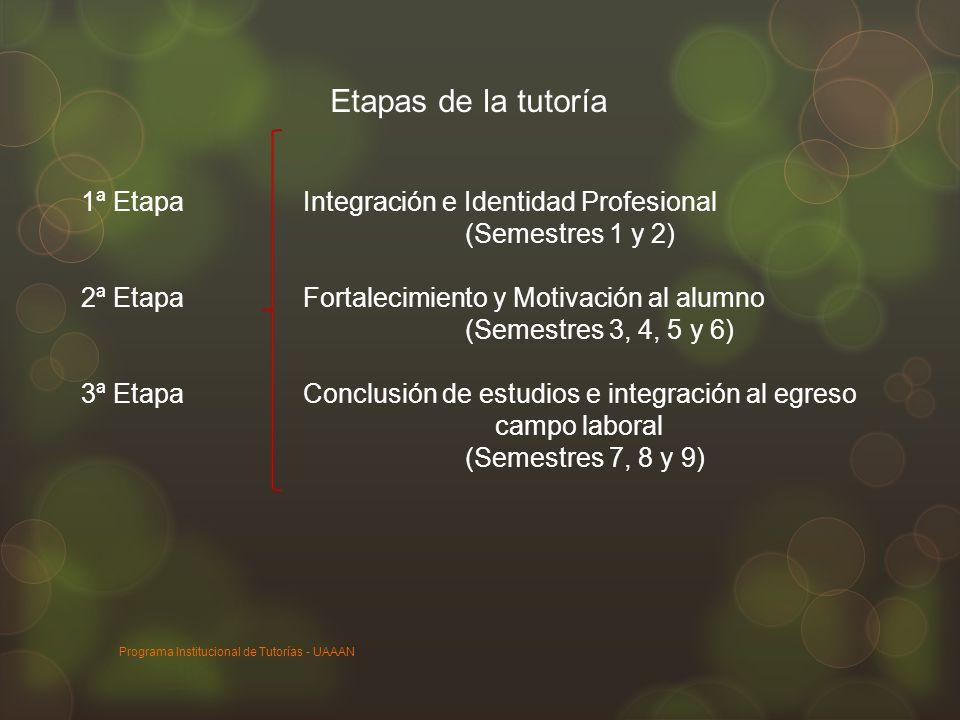 1ª Etapa Integración e Identidad Profesional (Semestres 1 y 2) 2ª Etapa Fortalecimiento y Motivación al alumno (Semestres 3, 4, 5 y 6) 3ª Etapa Conclu