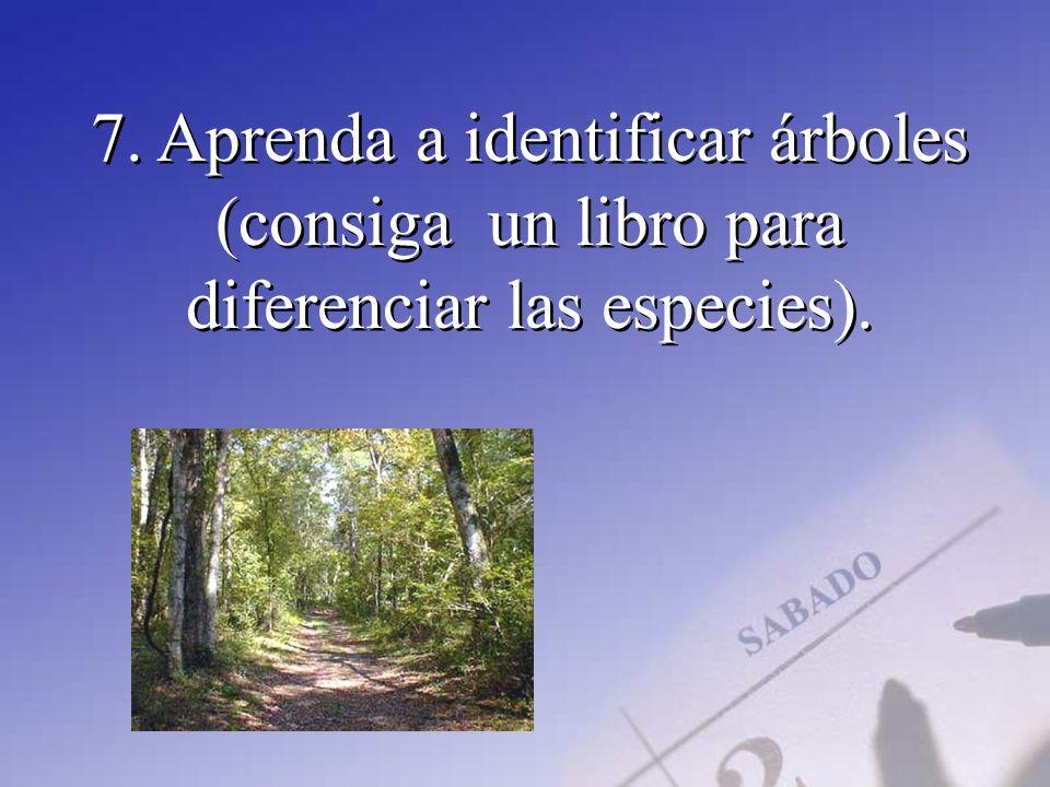 7. Aprenda a identificar árboles (consiga un libro para diferenciar las especies).