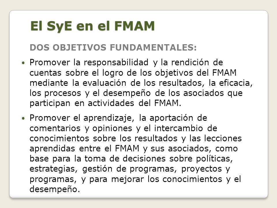 Mecanismo nacional de coordinación del SyE 4.
