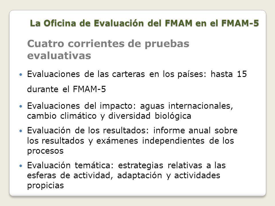 Fue aprobada por el Consejo del FMAM en noviembre de 2010.