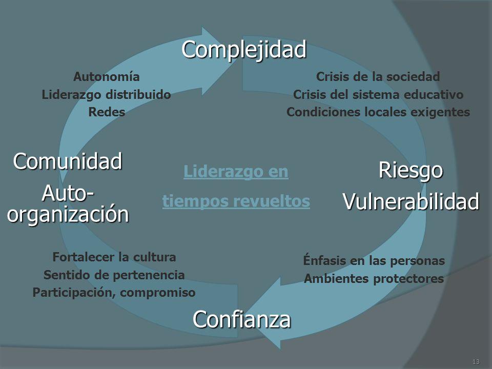 13 RiesgoVulnerabilidad Complejidad Confianza Comunidad Auto- organización Crisis de la sociedad Crisis del sistema educativo Condiciones locales exig