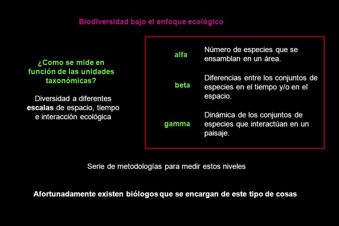 ¿Como se mide en función de las unidades taxonómicas.