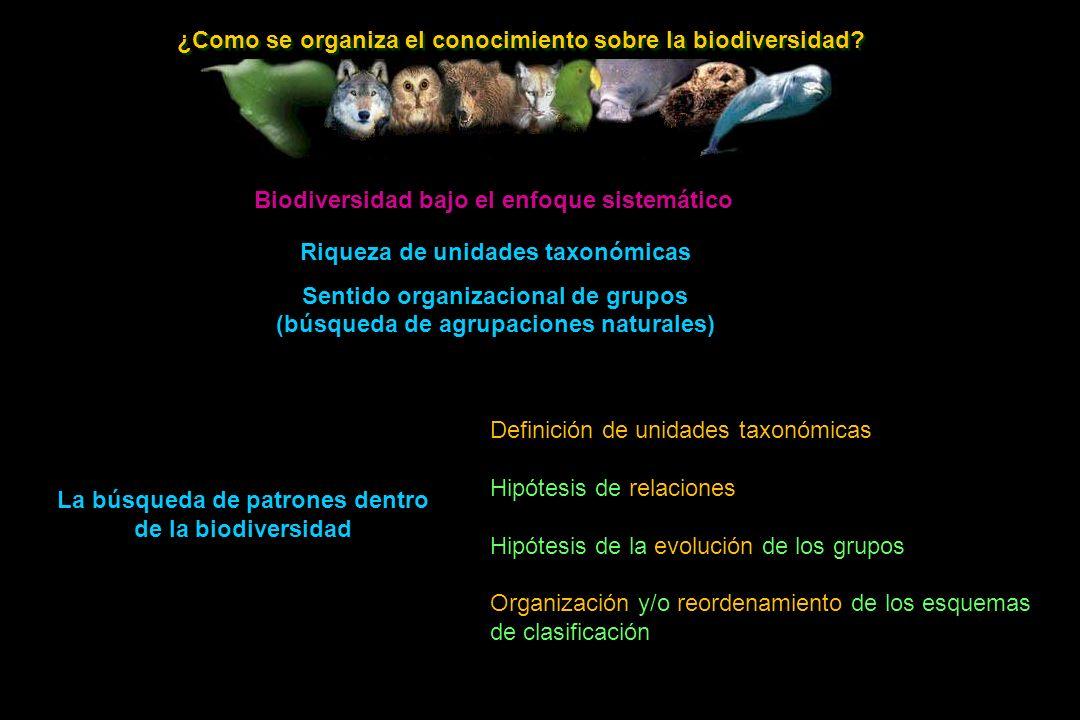 ¿Como se organiza el conocimiento sobre la biodiversidad.