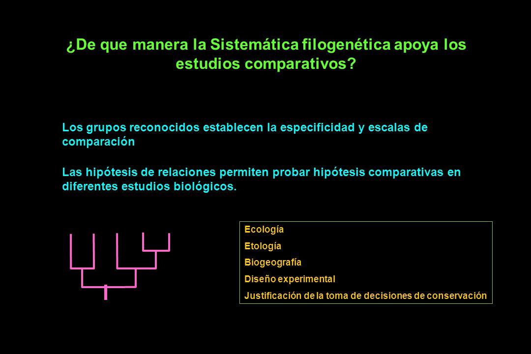 ¿De que manera la Sistemática filogenética apoya los estudios comparativos.