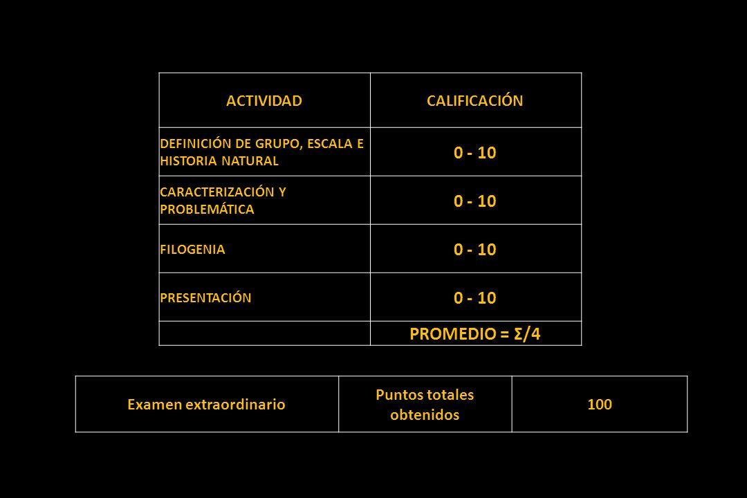 ACTIVIDADCALIFICACIÓN DEFINICIÓN DE GRUPO, ESCALA E HISTORIA NATURAL 0 - 10 CARACTERIZACIÓN Y PROBLEMÁTICA 0 - 10 FILOGENIA 0 - 10 PRESENTACIÓN 0 - 10 PROMEDIO = Σ/4 Examen extraordinario Puntos totales obtenidos 100