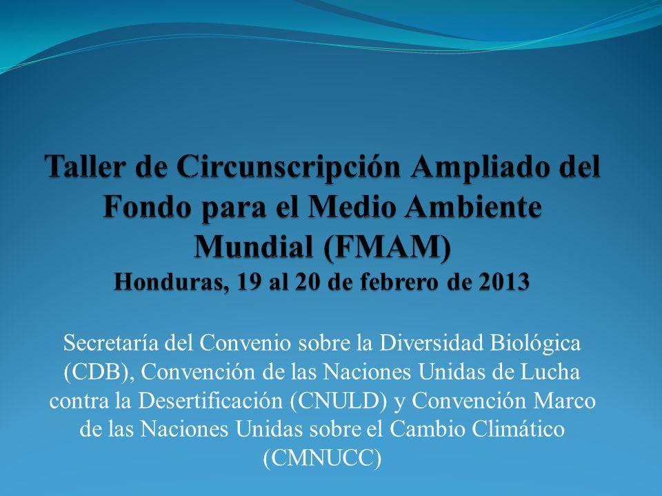 Secretaría del Convenio sobre la Diversidad Biológica (CDB), Convención de las Naciones Unidas de Lucha contra la Desertificación (CNULD) y Convención