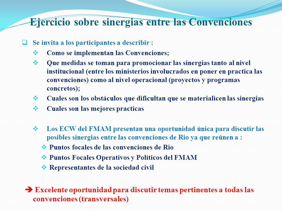 Ejercicio sobre sinergias entre las Convenciones Se invita a los participantes a describir : Como se implementan las Convenciones; Que medidas se toma