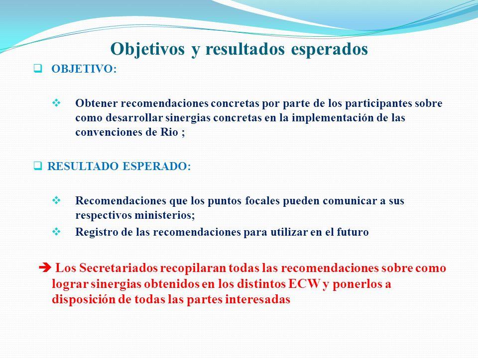 Objetivos y resultados esperados OBJETIVO: Obtener recomendaciones concretas por parte de los participantes sobre como desarrollar sinergias concretas
