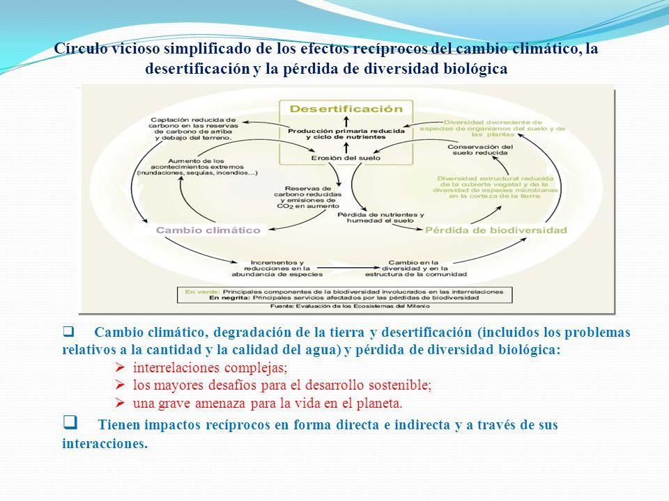 Círculo vicioso simplificado de los efectos recíprocos del cambio climático, la desertificación y la pérdida de diversidad biológica Cambio climático,