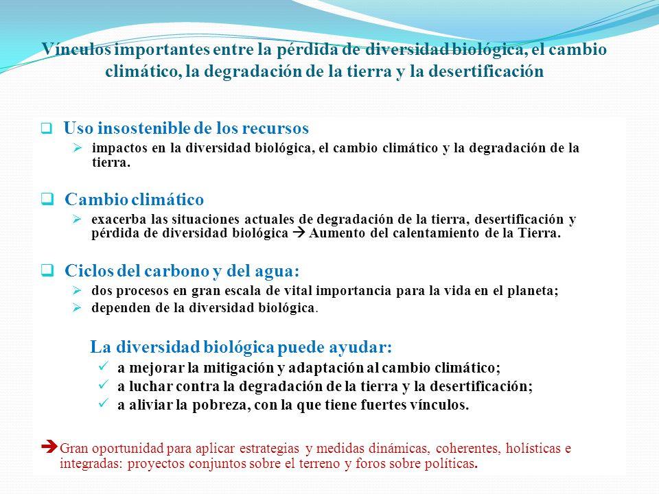 Vínculos importantes entre la pérdida de diversidad biológica, el cambio climático, la degradación de la tierra y la desertificación Uso insostenible