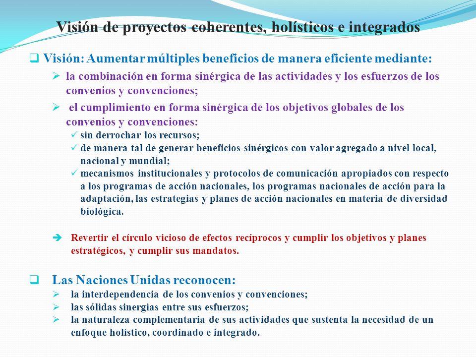 Visión de proyectos coherentes, holísticos e integrados Visión: Aumentar múltiples beneficios de manera eficiente mediante: la combinación en forma si