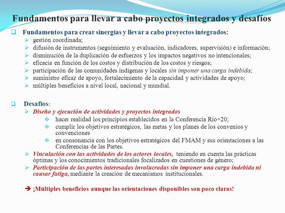 Fundamentos para llevar a cabo proyectos integrados y desafíos Fundamentos para crear sinergias y llevar a cabo proyectos integrados: gestión coordina