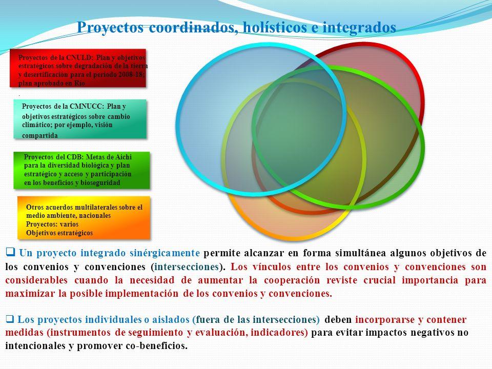 Proyectos coordinados, holísticos e integrados Proyectos de la CMNUCC: Plan y objetivos estratégicos sobre cambio climático; por ejemplo, visión compa