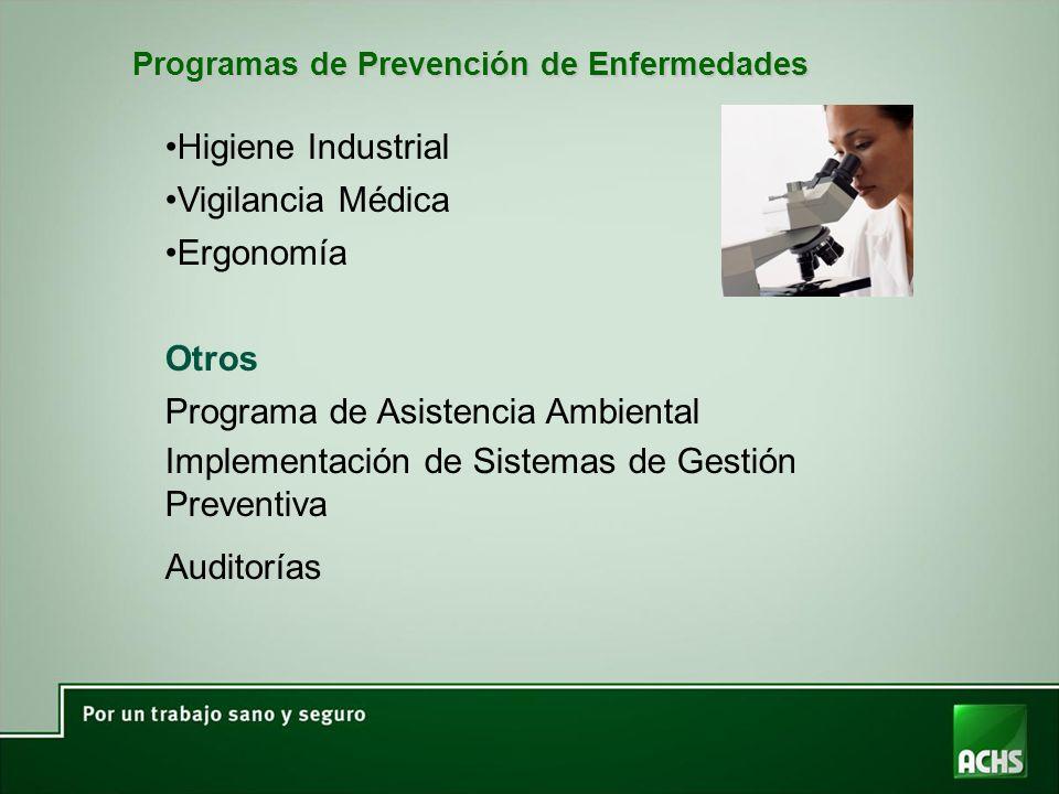 Programas de Prevención de Enfermedades Higiene Industrial Vigilancia Médica Ergonomía Otros Programa de Asistencia Ambiental Implementación de Sistemas de Gestión Preventiva Auditorías