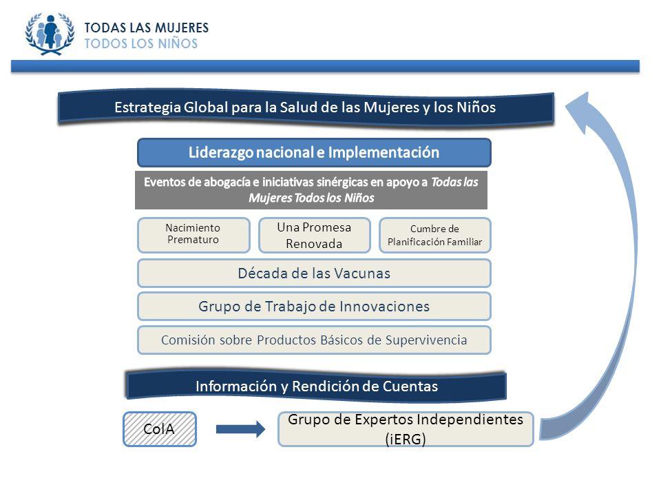 Nacimiento Prematuro Una Promesa Renovada Cumbre de Planificación Familiar Década de las Vacunas Grupo de Trabajo de Innovaciones Comisión sobre Produ