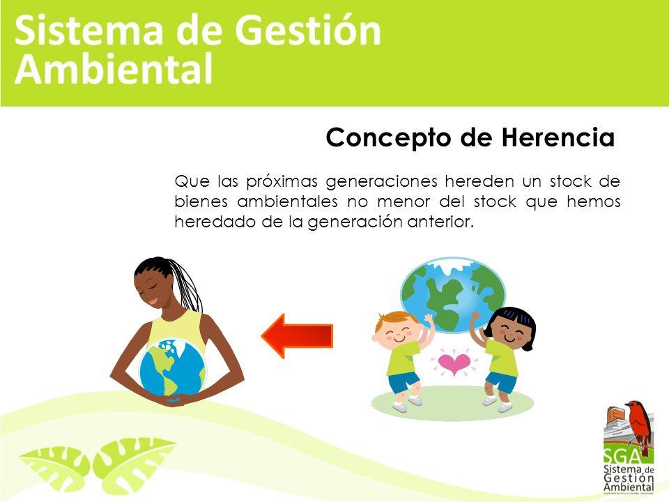 Que las próximas generaciones hereden un stock de bienes ambientales no menor del stock que hemos heredado de la generación anterior.