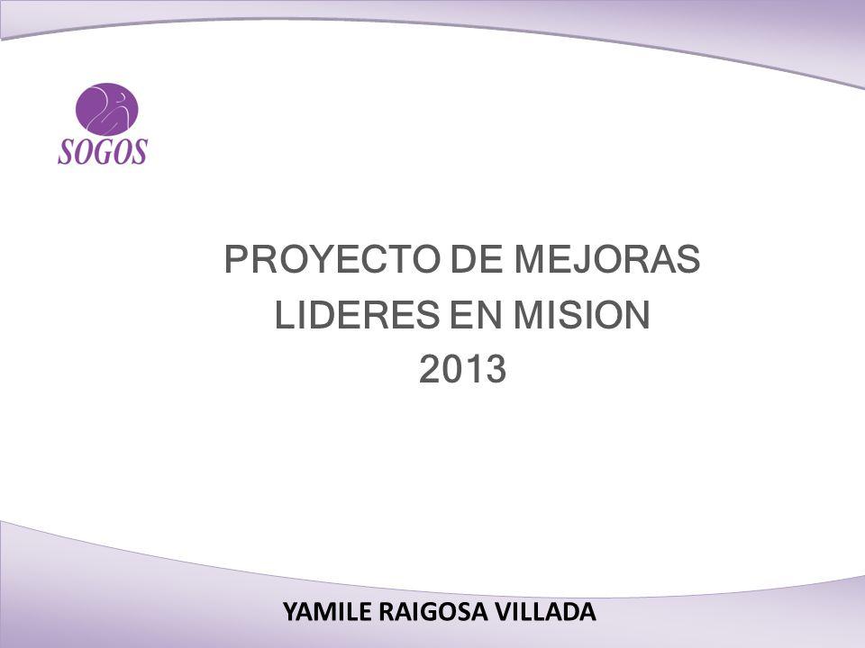 YAMILE RAIGOSA VILLADA PROYECTO DE MEJORAS LIDERES EN MISION 2013