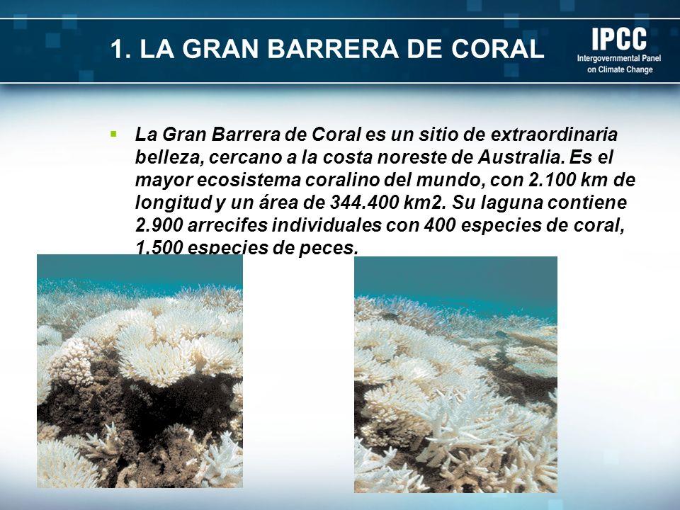 1. LA GRAN BARRERA DE CORAL La Gran Barrera de Coral es un sitio de extraordinaria belleza, cercano a la costa noreste de Australia. Es el mayor ecosi