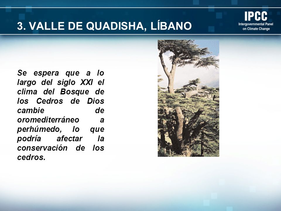 3. VALLE DE QUADISHA, LÍBANO Se espera que a lo largo del siglo XXI el clima del Bosque de los Cedros de Dios cambie de oromediterráneo a perhúmedo, l