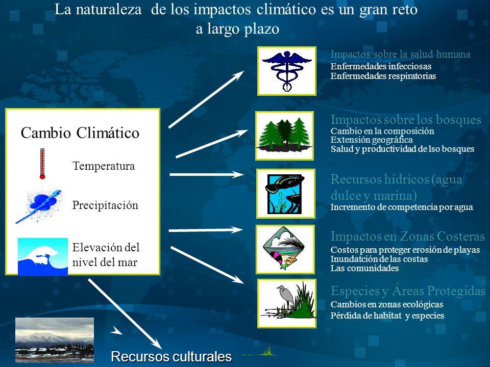 Impactos sobre la salud humana Enfermedades infecciosas Enfermedades respiratorias Recursos hídricos (agua dulce y marina) Incremento de competencia por agua Impactos en Zonas Costeras Costos para proteger erosión de playas Inundatción de las costas Las comunidades Impactos sobre los bosques Cambio en la composición Extensión geográfica Salud y productividad de lso bosques Especies y Áreas Protegidas Cambios en zonas ecológicas Pérdida de habitat y especies La naturaleza de los impactos climático es un gran reto a largo plazo Cambio Climático Elevación del nivel del mar Temperatura Precipitación Recursos culturales Recursos culturales LA