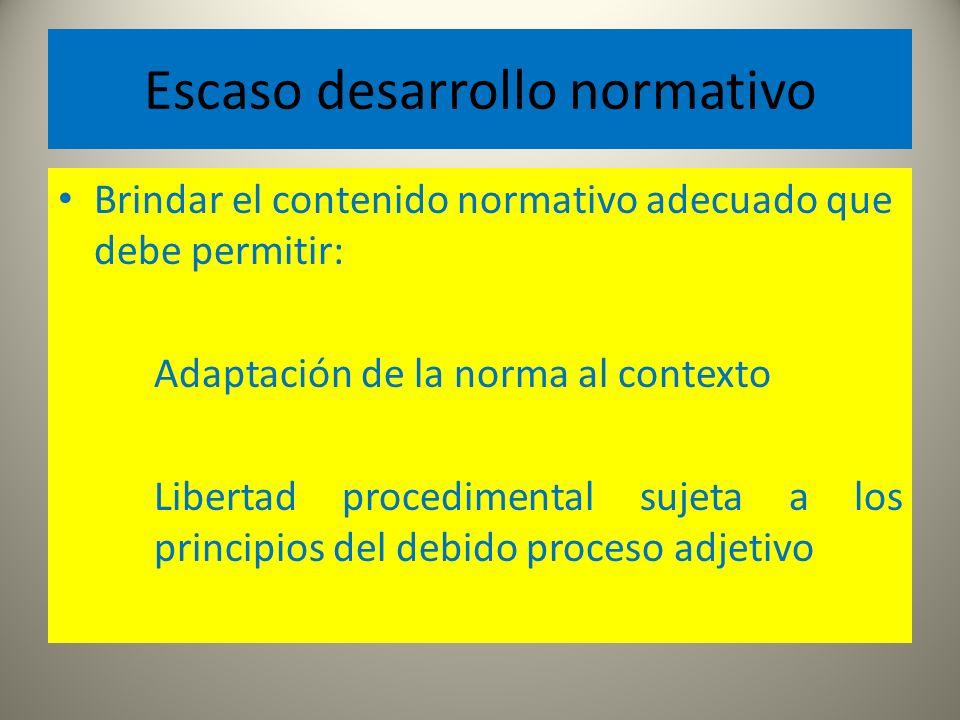 Escaso desarrollo normativo Brindar el contenido normativo adecuado que debe permitir: Adaptación de la norma al contexto Libertad procedimental sujet