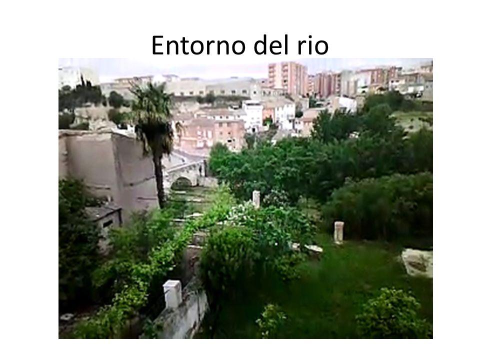 Entorno del rio