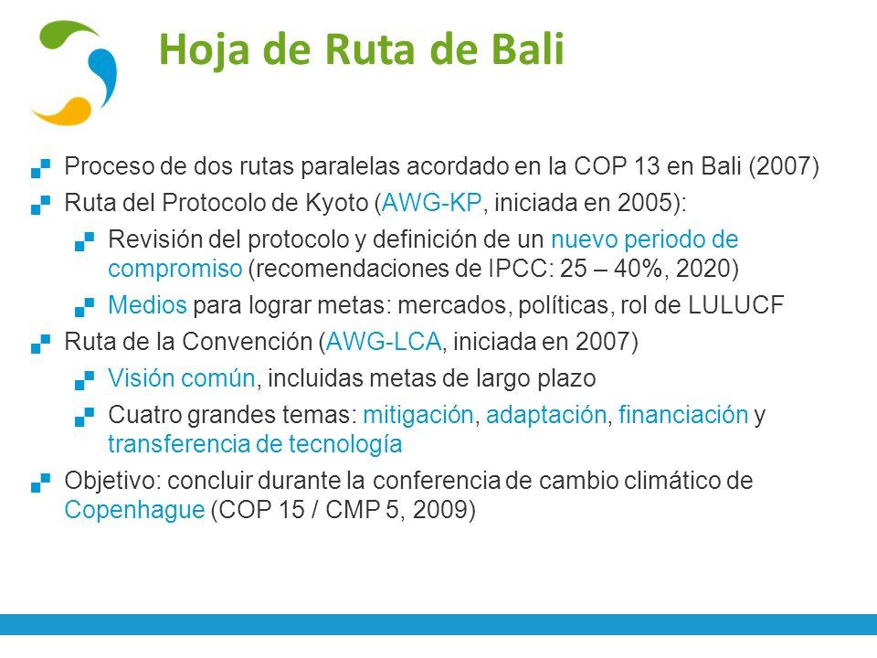 Hoja de Ruta de Bali Proceso de dos rutas paralelas acordado en la COP 13 en Bali (2007) Ruta del Protocolo de Kyoto (AWG-KP, iniciada en 2005): Revis