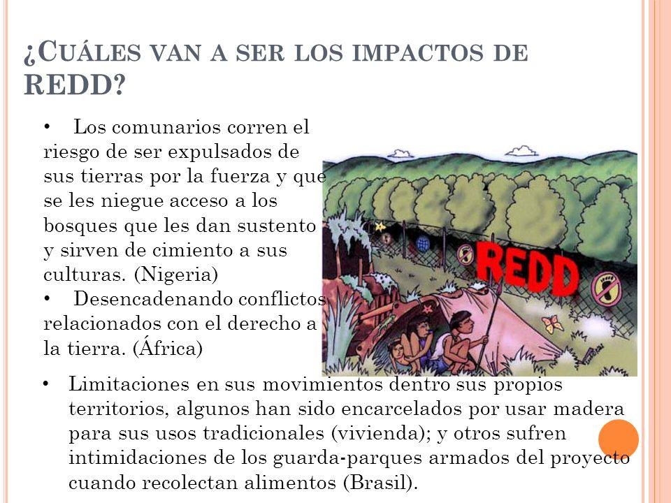 ¿C UÁLES VAN A SER LOS IMPACTOS DE REDD.