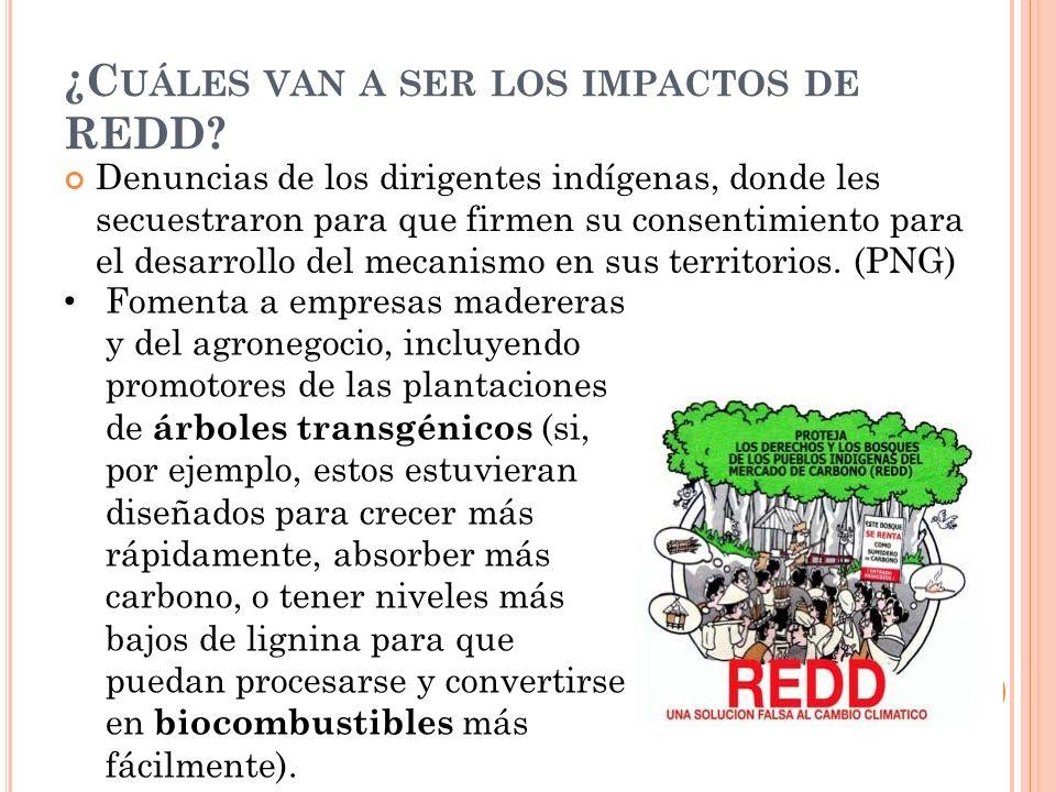 Denuncias de los dirigentes indígenas, donde les secuestraron para que firmen su consentimiento para el desarrollo del mecanismo en sus territorios.