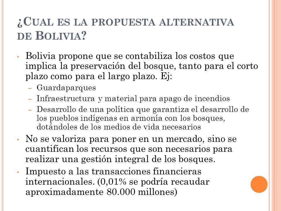 Bolivia propone que se contabiliza los costos que implica la preservación del bosque, tanto para el corto plazo como para el largo plazo.
