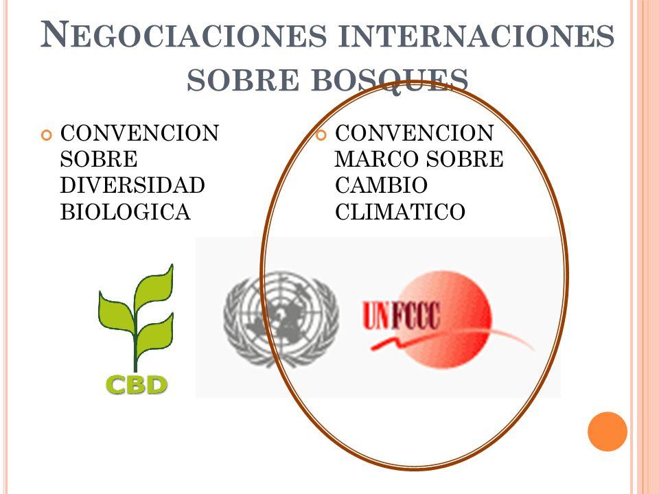 CONVENCION SOBRE DIVERSIDAD BIOLOGICA CONVENCION MARCO SOBRE CAMBIO CLIMATICO N EGOCIACIONES INTERNACIONES SOBRE BOSQUES