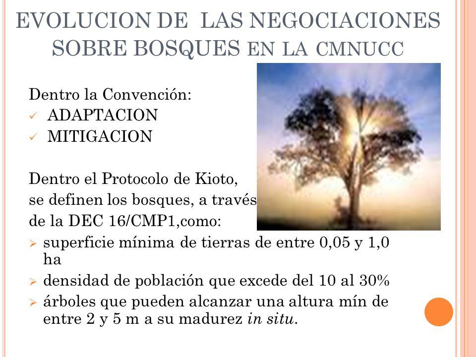 Dentro la Convención: ADAPTACION MITIGACION Dentro el Protocolo de Kioto, se definen los bosques, a través de la DEC 16/CMP1,como: superficie mínima de tierras de entre 0,05 y 1,0 ha densidad de población que excede del 10 al 30% árboles que pueden alcanzar una altura mín de entre 2 y 5 m a su madurez in situ.