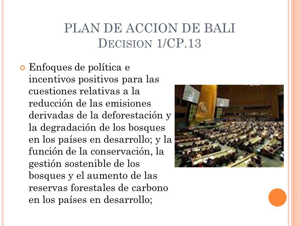 PLAN DE ACCION DE BALI D ECISION 1/CP.13 Enfoques de política e incentivos positivos para las cuestiones relativas a la reducción de las emisiones derivadas de la deforestación y la degradación de los bosques en los países en desarrollo; y la función de la conservación, la gestión sostenible de los bosques y el aumento de las reservas forestales de carbono en los países en desarrollo;