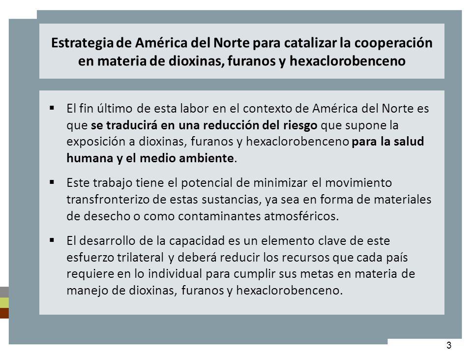 4 Monitoreo dioxinas y furanos en aire ambiente para determinar la línea base y la eficacia de la implementación de acciones La Red Nacional de Vigilancia de la Contaminación del Aire (National Air Pollution Surveillance Network, NAPS) en Canadá y la Red Nacional de Monitoreo de Dioxinas en Aire (National Dioxins Air Monitoring Network, NDAMN) en Estados Unidos fueron las primeras en establecerse, en el 2007 se estableció la Red Mexicana de Monitoreo de Dioxinas y Furanos en Aire Ambiente en México (parte de las actividades del ET).