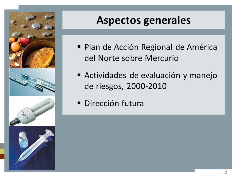 Plan de Acción Regional de América del Norte sobre Mercurio Actividades de evaluación y manejo de riesgos, 2000-2010 Dirección futura Aspectos generales 2