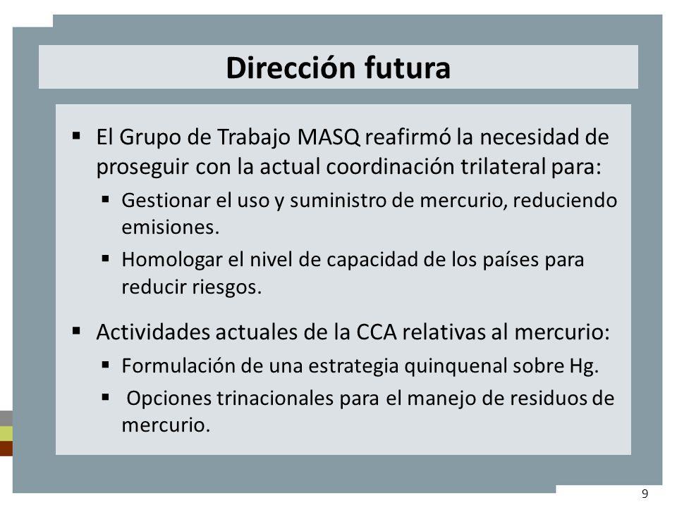 Dirección futura El Grupo de Trabajo MASQ reafirmó la necesidad de proseguir con la actual coordinación trilateral para: Gestionar el uso y suministro de mercurio, reduciendo emisiones.
