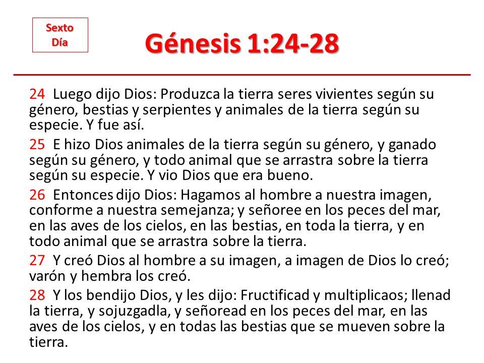 Génesis 1:24-28 24 Luego dijo Dios: Produzca la tierra seres vivientes según su género, bestias y serpientes y animales de la tierra según su especie.