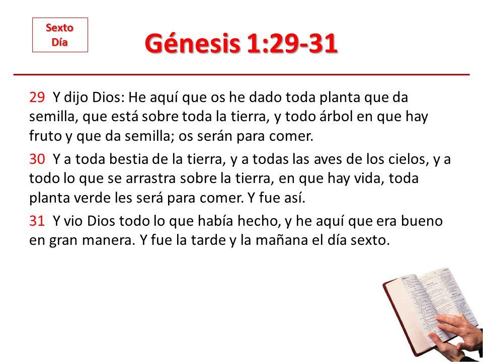 Génesis 1:29-31 29 Y dijo Dios: He aquí que os he dado toda planta que da semilla, que está sobre toda la tierra, y todo árbol en que hay fruto y que