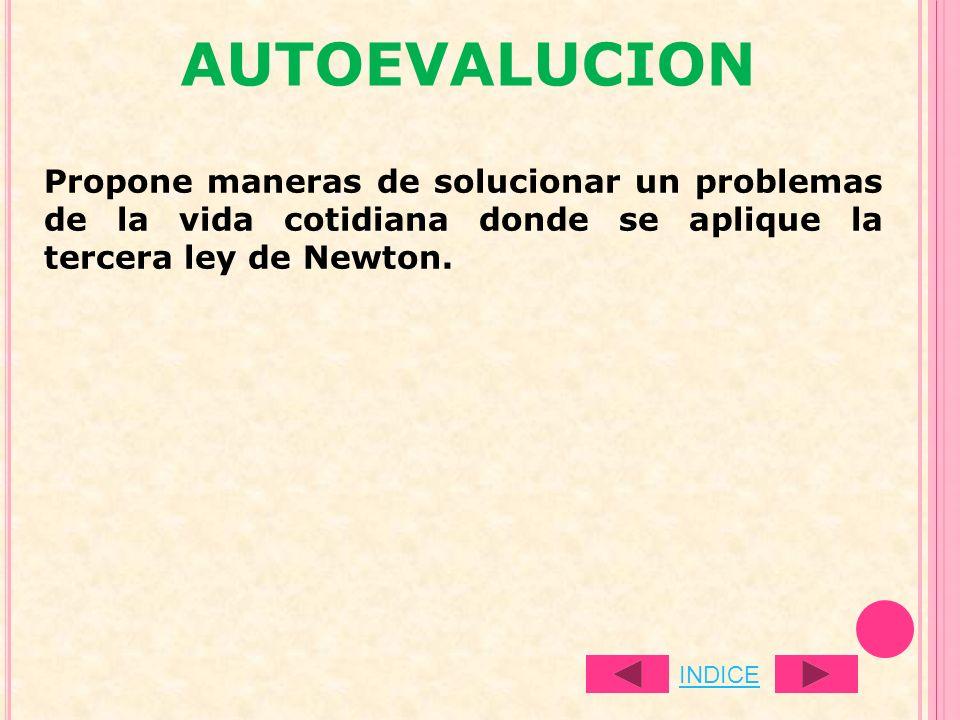 AUTOEVALUCION Propone maneras de solucionar un problemas de la vida cotidiana donde se aplique la tercera ley de Newton. INDICE