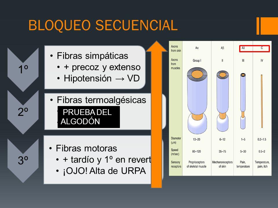 BLOQUEO SECUENCIAL 1º Fibras simpáticas + precoz y extenso Hipotensión VD 2º Fibras termoalgésicas dolor y tºC Analgesia 3º Fibras motoras + tardío y